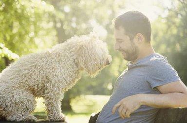 man enjoying a pet friendly drug rehab with his dog