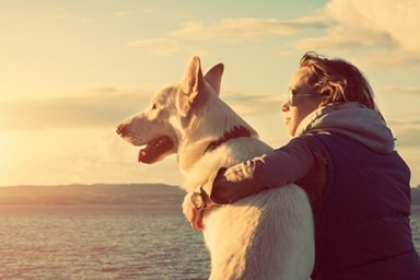 individual enjoying a pet friendly rehab center